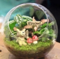 DOGA Art Club Mothers' & Fathers' Day Event – Terrarium Workshop on 7 May
